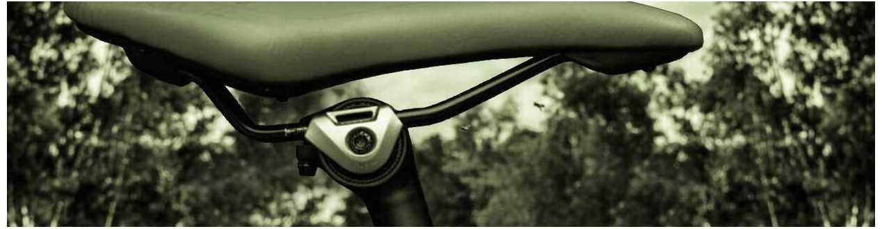 Sillin y tija de bicicleta - Biketic